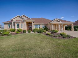 Photo of 769 Iron Oak Way, THE VILLAGES, FL 32163 (MLS # G5021518)