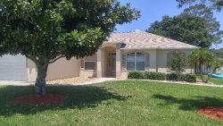 Photo of 2626 Hartwood Pines Way, CLERMONT, FL 34711 (MLS # G5029684)