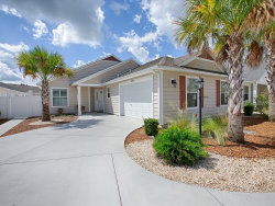 Photo of 1168 Old Dominion Road, THE VILLAGES, FL 32162 (MLS # G5031072)