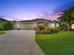 Photo of 2470 Underhill Court, THE VILLAGES, FL 32163 (MLS # G5031575)