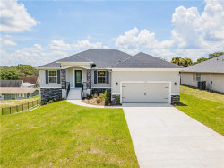 Photo of 10436 Calle De Flores Drive, CLERMONT, FL 34711 (MLS # G5032534)