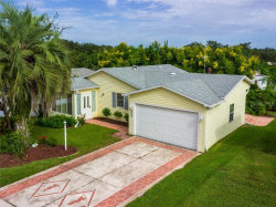 Photo of 515 Rainbow Boulevard, THE VILLAGES, FL 32159 (MLS # G5033803)