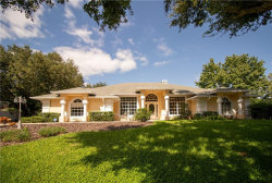 Photo of 11734 Lake Clair Circle, CLERMONT, FL 34711 (MLS # G5033948)