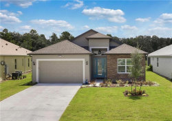 Photo of 8484 Bridgeport Bay Circle, MOUNT DORA, FL 32757 (MLS # G5034088)