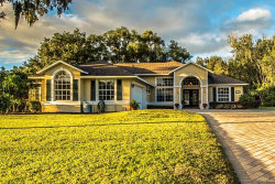 Photo of 1380 W Lakeshore Drive, CLERMONT, FL 34711 (MLS # G5036114)
