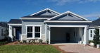 Photo of 10409 Alcon Blue Dr., RIVERVIEW, FL 33578 (MLS # J901261)