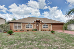 Photo of 1742 Minnow Court, KISSIMMEE, FL 34759 (MLS # L4900800)