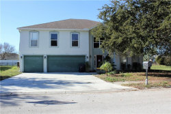 Photo of 115 Evergreen Drive, AUBURNDALE, FL 33823 (MLS # L4905397)