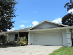 Photo of 5857 Bambi Court, LAKELAND, FL 33809 (MLS # L4910285)