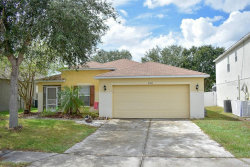 Photo of 2509 Brownwood Drive, MULBERRY, FL 33860 (MLS # L4911426)