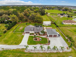 Photo of 3616 Pioneer Country Trail, PLANT CITY, FL 33567 (MLS # L4914058)