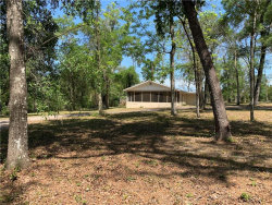 Photo of 32218 Marchmont Circle, DADE CITY, FL 33523 (MLS # L4914933)
