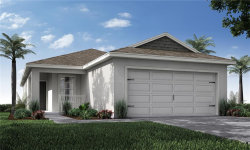 Photo of 11642 Stone Pine Street, RIVERVIEW, FL 33579 (MLS # L4916618)