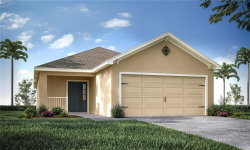 Photo of 11718 Stone Pine Street, RIVERVIEW, FL 33579 (MLS # L4916621)