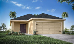 Photo of 11794 Stone Pine Street, RIVERVIEW, FL 33579 (MLS # L4916623)