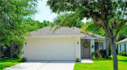 Photo of 18115 Portside Street, TAMPA, FL 33647 (MLS # O5556719)