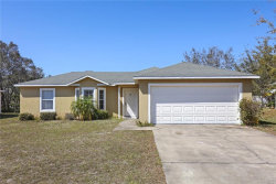 Photo of 264 Grouper Court, POINCIANA, FL 34759 (MLS # O5569421)
