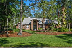 Photo of 12016 Gray Birch, ORLANDO, FL 32832 (MLS # O5702037)