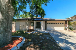 Photo of 3988 Orchard Hill Circle, PALM HARBOR, FL 34684 (MLS # O5702503)