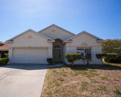 Photo of 2617 Hawk Roost Court, HOLIDAY, FL 34691 (MLS # O5708563)