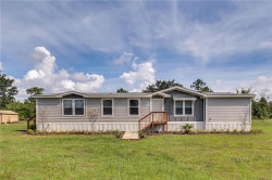 Photo of 5235 County Road 561, CLERMONT, FL 34714 (MLS # O5721995)