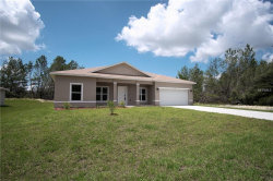 Photo of 362 Hibiscus Drive, POINCIANA, FL 34759 (MLS # O5724071)