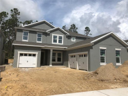Photo of 7524 Tangerine Knoll Loop, WINTER GARDEN, FL 34787 (MLS # O5727874)