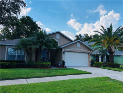 Photo of 3858 Seminole Drive, ORLANDO, FL 32812 (MLS # O5739000)