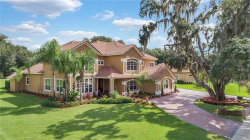 Photo of 177 Osprey Hammock Trail, SANFORD, FL 32771 (MLS # O5740527)