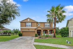 Photo of 9306 Marsh Oaks Court, ORLANDO, FL 32832 (MLS # O5740594)