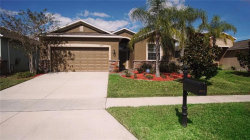 Photo of 2717 Carrickton Circle, ORLANDO, FL 32824 (MLS # O5741766)