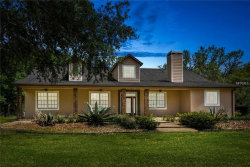 Photo of 6813 S Fork Ranch Drive, CLERMONT, FL 34714 (MLS # O5747317)
