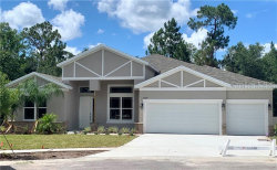 Photo of 27027 Sora Boulevard, WESLEY CHAPEL, FL 33544 (MLS # O5764606)