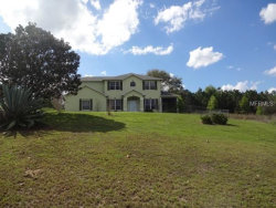 Photo of 18015 Victorian Drive, CLERMONT, FL 34715 (MLS # O5768398)