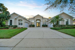 Photo of 1009 Emerald Hill Way, VALRICO, FL 33594 (MLS # O5770111)