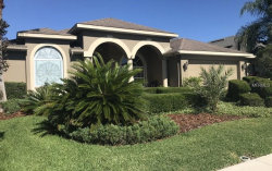 Photo of 2039 Cardamon Drive, TRINITY, FL 34655 (MLS # O5786035)