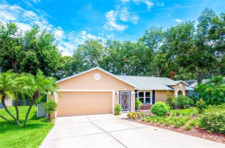 Photo of 940 Haddock Drive, CLERMONT, FL 34711 (MLS # O5797110)