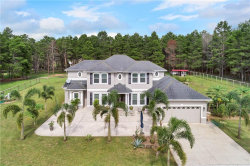 Photo of 9310 Quiet Lane, WINTER GARDEN, FL 34787 (MLS # O5797541)