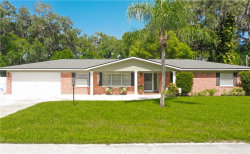 Photo of 704 Coulter Place, BRANDON, FL 33511 (MLS # O5798939)