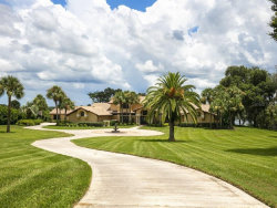 Photo of 38130 Timberlane Drive, UMATILLA, FL 32784 (MLS # O5803282)