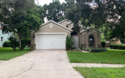 Photo of 2919 Folklore Drive, VALRICO, FL 33596 (MLS # O5803787)