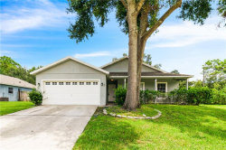 Photo of 101 W Grossenbacher Drive, APOPKA, FL 32712 (MLS # O5805556)