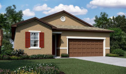 Photo of 2018 Sloans Outlook Drive, GROVELAND, FL 34736 (MLS # O5806722)
