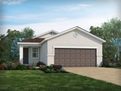 Photo of 11878 Brighton Knoll Loop, RIVERVIEW, FL 33579 (MLS # O5806889)