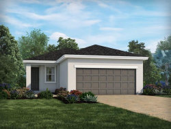 Photo of 11810 Brighton Knoll Loop, RIVERVIEW, FL 33579 (MLS # O5806915)