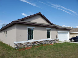 Photo of 1828 Snapper Drive, POINCIANA, FL 34759 (MLS # O5806999)