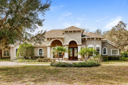 Photo of 17244 Breeders Cup Drive, ODESSA, FL 33556 (MLS # O5812301)