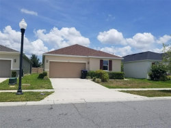 Photo of 12013 Sumter Drive, ORLANDO, FL 32824 (MLS # O5819245)