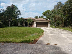 Photo of 1401 Wendover Street, NORTH PORT, FL 34286 (MLS # O5824399)