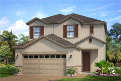Photo of 6217 Voyagers Place, APOLLO BEACH, FL 33572 (MLS # O5825121)